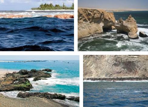Ecosistemas marinos del peru