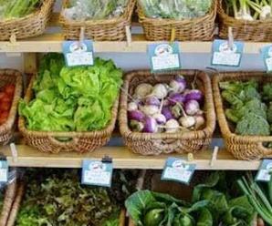 10 Razones para consumir alimentos orgánicos