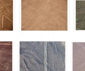 Top 5 Recomendaciones para hacer el Tour Líneas de Nazca